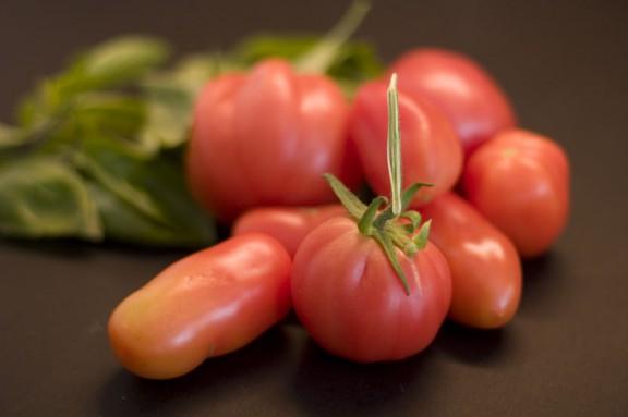 Frusna tomater…
